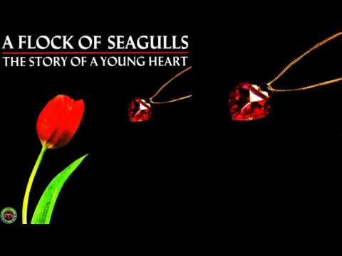 A Flock of Seagulls - The End