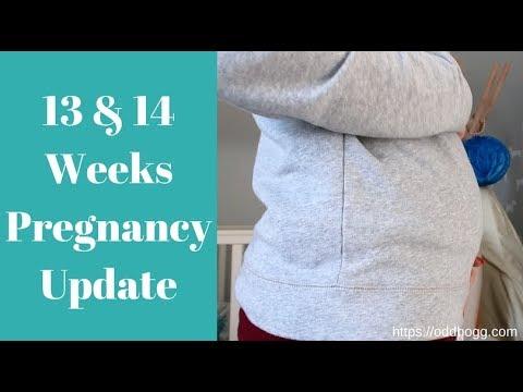 13 & 14 Weeks Pregnant | Morning Sickness, Heartburn, Retinopathy and a  Bump Shot