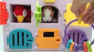 PARENTS Veterinary Animal Hospital Matching Keys Clinic Play Set Toy