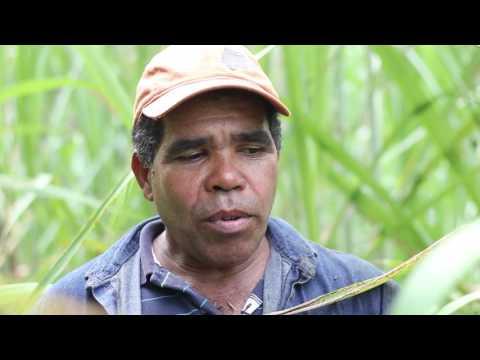 San Andres - Programa Unidos Hacemos Más Por Girardota