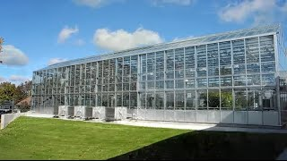 Cultivating Excellence: London Greenhouse