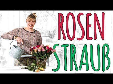 ROSENSTRAUß - GET UP, STAND UP!