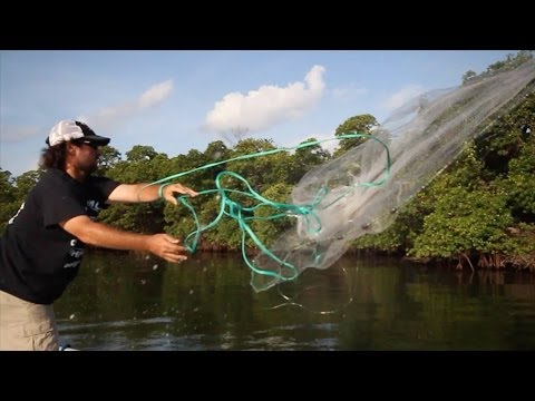 Best Inshore Snook FIshing FEATURE EPISODE with Live Bait Captain Jeff