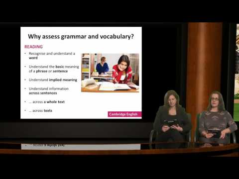 Understanding grammar and vocabulary assessment: what every teacher should know