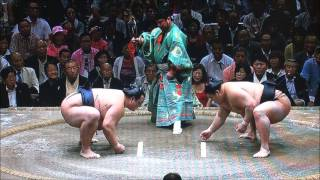 大相撲秋場所 11日目 林家ペー パーが観戦.