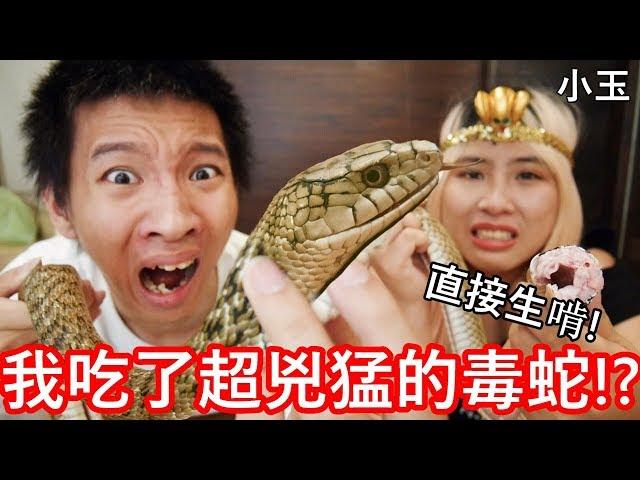 【小玉】直接生啃!我吃了超兇猛的毒蛇!?【全長170公分】