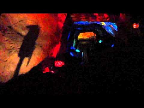 Disney Seven Dwarfs Mine Train Ride - On Board Camera