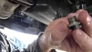 Change engine oil + filter at home: the drain