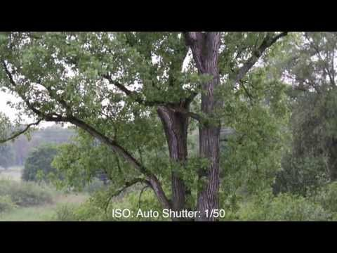 Canon EOS 700D / Rebel T5i / Kiss 7Xi Video & AF Test