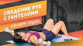 Упражнения для укрепления грудных мышц Сведение рук с гантелями Качаем грудь