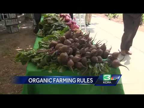New bill aims to change organic food regulations in California