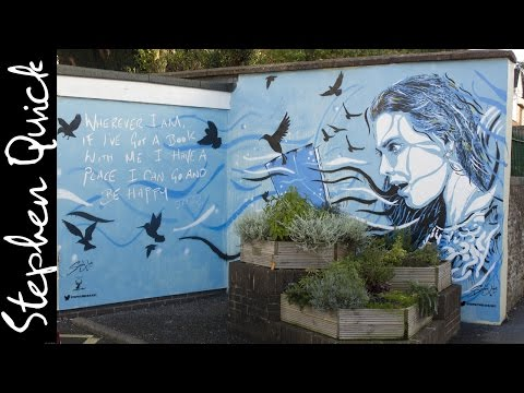 HONITON LIBRARY MURAL | STREET ART // Stephen Quick