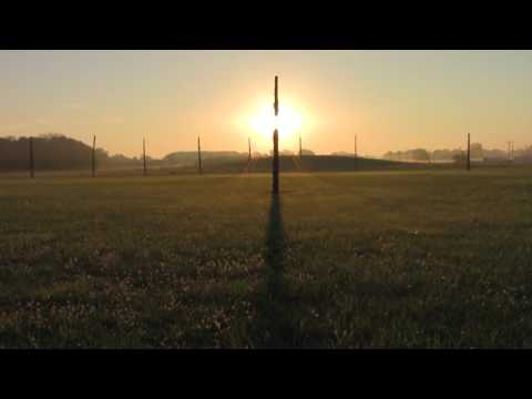 The Calendar at Cahokia | Woodhenge