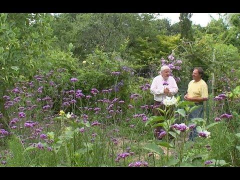 remarquable jardin prive d un amateur de plantes