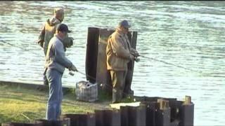 Диалоги о рыбалке - Финляндия Судак Язь