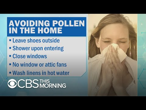 How to minimize pollen exposure to avoid misery during allergy season