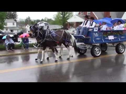 Horse & Carriage Parade - 2014 WV Strawberry Festival