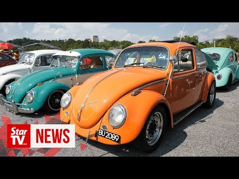 Beetle owners celebrate world's favourite Bug