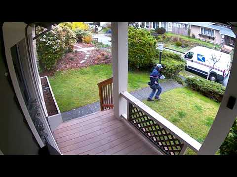 The KiddChris Show - Mailman Gets Spooked By Dog Crashing Through Window