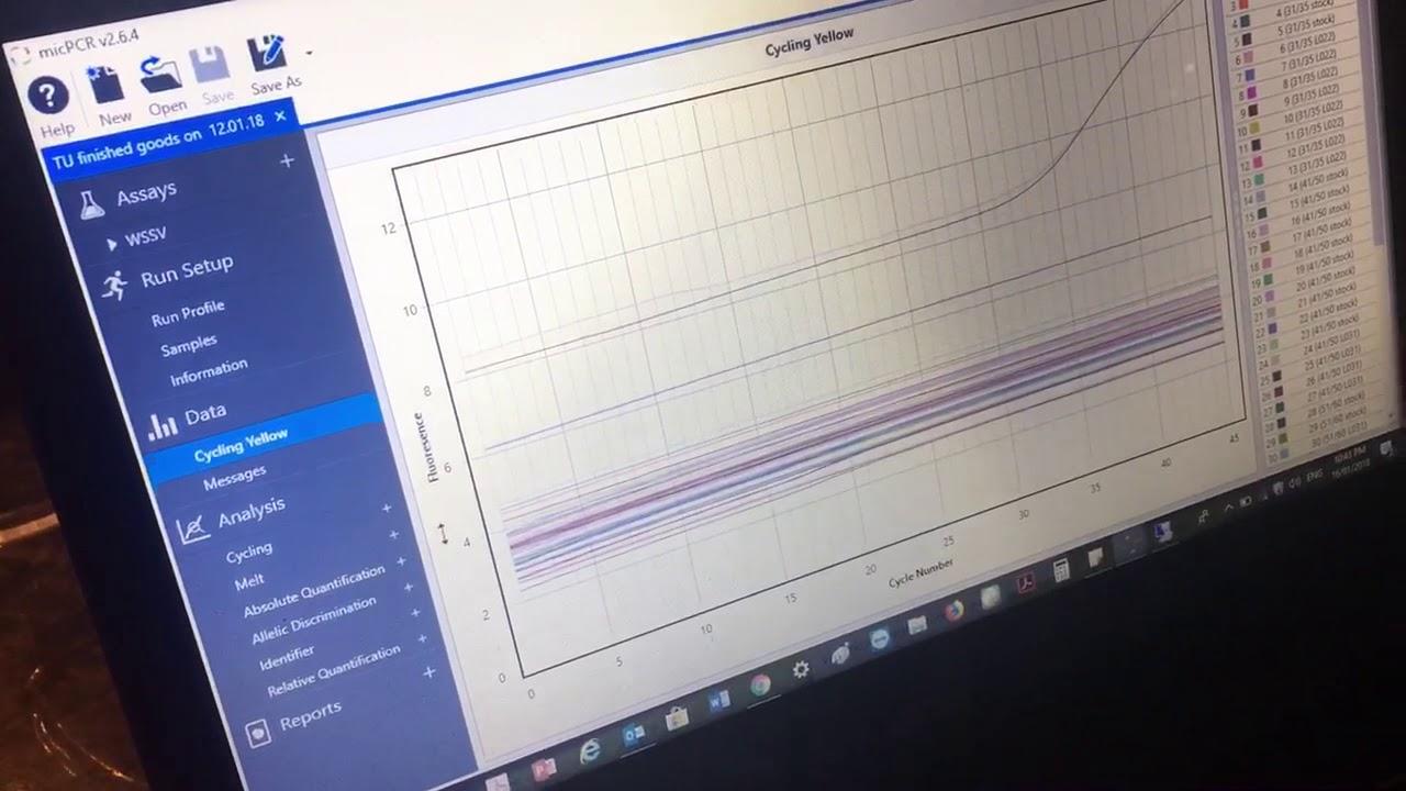 MIC QPCR results interpretation AgriGen
