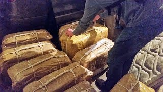 Ковальчук: кокаин—провокация спецслужб США | НОВОСТИ