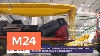 """""""Аэрофлот"""" предупредил о задержках в доставке багажа из Шереметьева - Москва 24"""