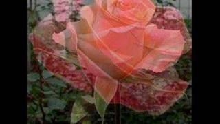 I will walk with my Love - Maureen Hegarty
