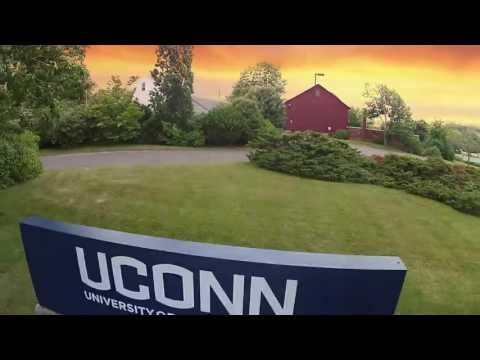 I'm Shmacked: University of Connecticut