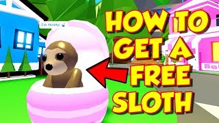 How To Get a FREE SLOTH - ROBLOX ADOPT ME