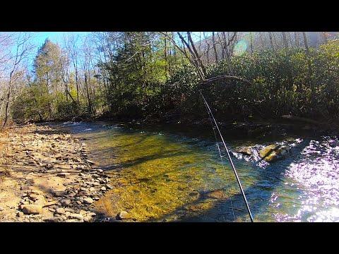 UNDISCLOSED Brook Trout Stream Fishing (Pennsylvania)