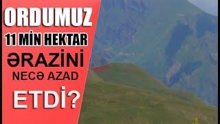 Ordumuz 11 min hektar ərazini necə azad etdi?