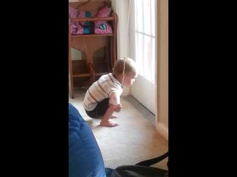 Memphis Playing with the Blinds
