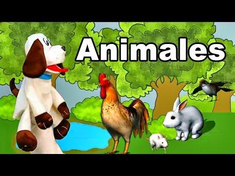Toby y Los Animales - Sonidos de los animales - Melodías para Dormir y Relajar - Estimulación