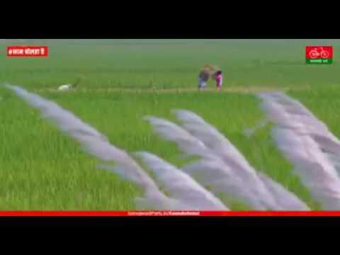 jagdishpur amethi