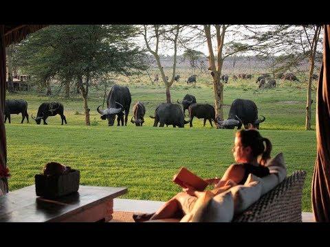 Sirikoi Lodge | Kenya Luxury Safari