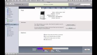 iPod Help : How to Transfer Music to an iPod