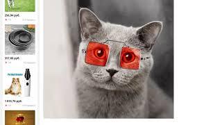 Металлические очки товары для домашних животных солнцезащитные очки для кошек
