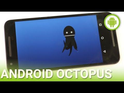 Android 8.0 Octopus: Anteprima In Italiano