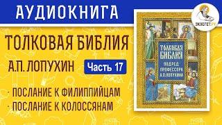 Толковая Библия. А.П. Лопухин. Новый Завет. Часть 17.