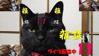 【初見さん大歓迎】雑談11【ライブ配信中】 thumbnail