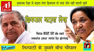 Mayawati Farrukhabad Live Reply to Muslims, 'BJP vote, SP, do not waste your vote