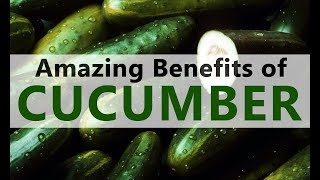 Top 10 Benefits of Cucumber - Health Benefits of Cucumber - Sliced Cucumber Amazing Benefits