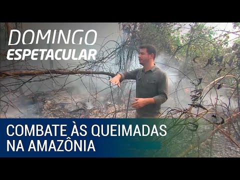Domingo Espetacular acompanha combate às queimadas na Amazônia