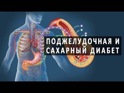 Связь между сахарным диабетом и состоянием поджелудочной железы