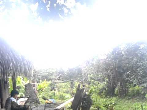 Eco tourism cabanas, Amazon rainforest