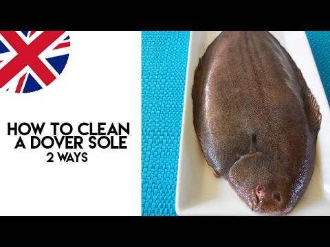 How To Clean A Dover Sole  - Two Ways