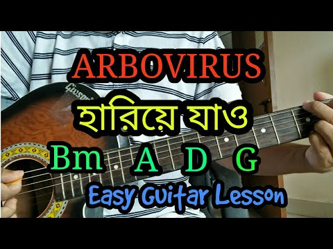 Hariye Jao | ARBOVIRUS | Bangla acoustic guitar chords lesson/cover/tutorial | Easy chords!!!