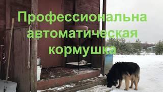 Автоматическая кормушка для собак и других животных