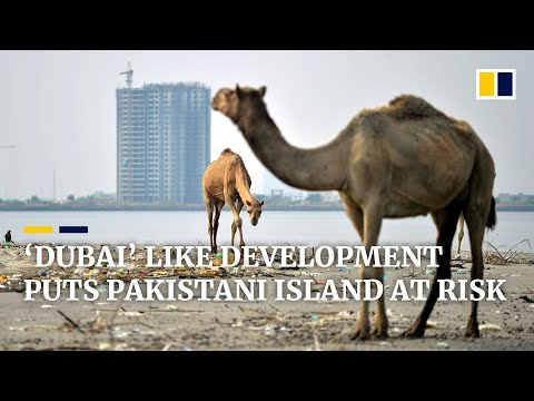 In Pakistan, environmentalists clash with government developers over future of Karachi island