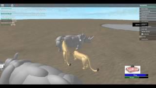 Wildes Afrika (ROBLOX) (BeachGirl214)